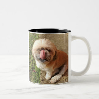 Shih Tzu Dog Funny Two Toned Mug