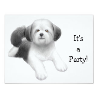 Shih Tzu Dog Invitation