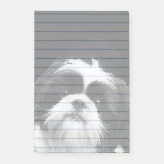 Shih Tzu dog post it notes 4X6 pad