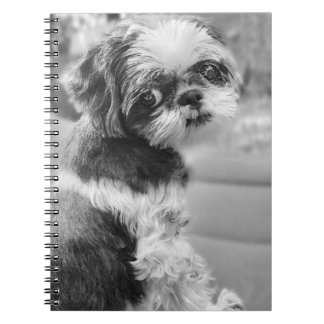Shih Tzu Girl Notebook