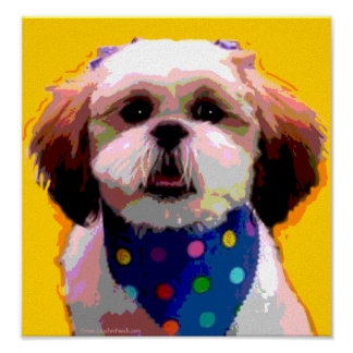 Shih Tzu in Polkadots Canvas Print