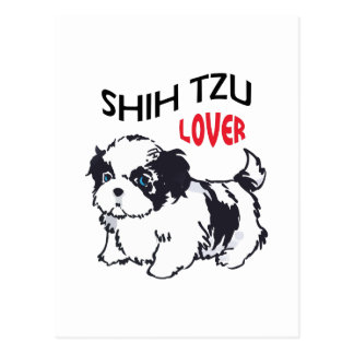 SHIH TZU LOVER POST CARD