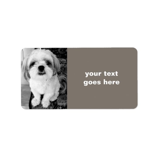 Shih Tzu Personalized Address Labels