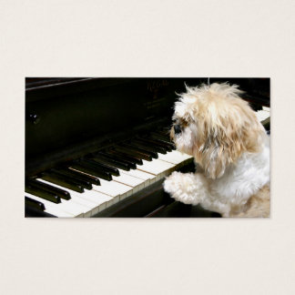 Shih Tzu piano lessons Business Card