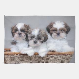 Shih Tzu puppies Kitchen Towels