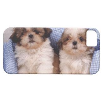 Shih Tzu puppies under a checked blanket iPhone 5 Case