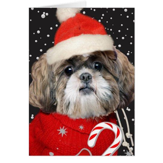 Shih Tzu Santa Portrait Card