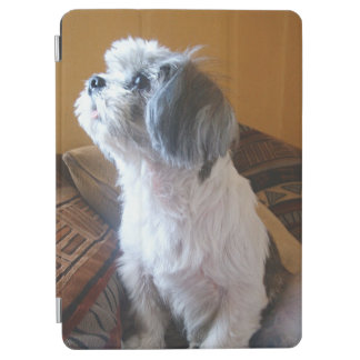 Shih_Tzu sitting.png iPad Air Cover