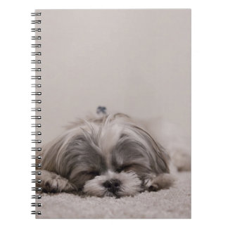 Shih tzu Sleeping Notebook , Sleeping Dog