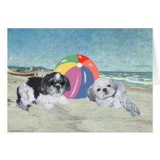 Shih Tzus at the Beach Card