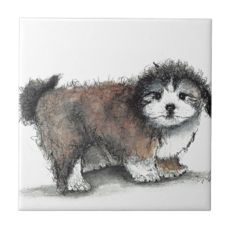 Shihtzu Puppy Dog, Pet Ceramic Tile