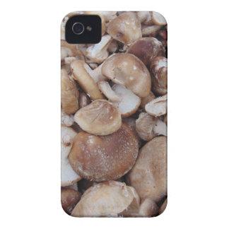 Shiitake Mushrooms iPhone 4 Cases