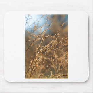 Shimmering Golden Prairie Grass Mouse Pad