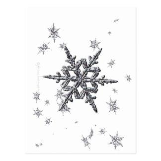 Shimmering Snowflake Postcard