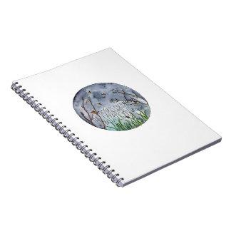 Shine notebook