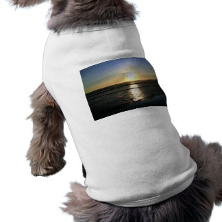 Shine On Pet Tshirt