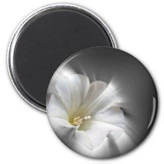 Shining in the dark 2 inch round magnet