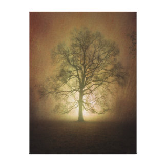 Shining Oak Tree Canvas Print