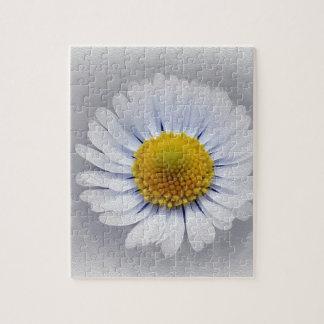 shining white daisy jigsaw puzzle