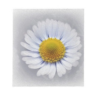 shining white daisy notepad