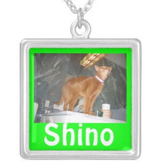 Shino Silver Plated Necklace