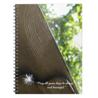 Shiny Notebook