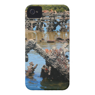 Shipwreck in the mangroves iPhone 4 case