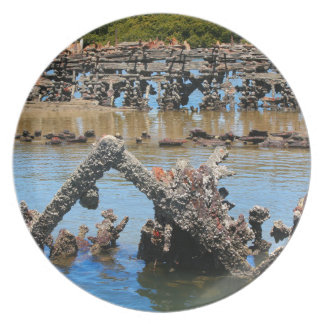 Shipwreck in the mangroves plate