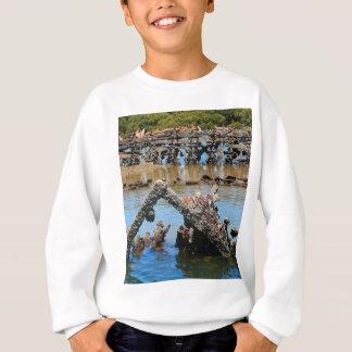 Shipwreck in the mangroves sweatshirt