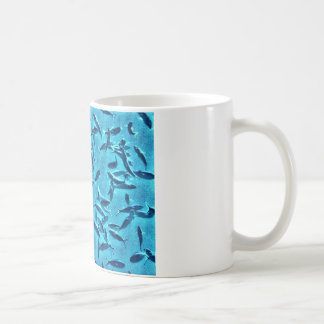 Shoal of Fish Mug