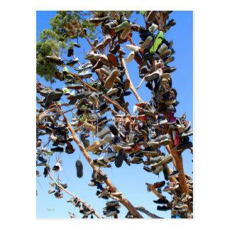 Shoe Tree, Highway 395 Postcard
