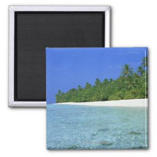 Shore 14 square magnet