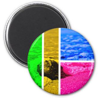 Shore 2 Inch Round Magnet