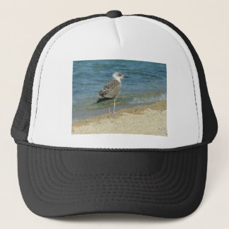 Shore bird trucker hat