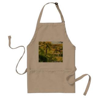 Shore of a small lake standard apron