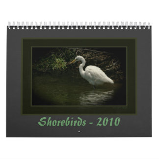 Shorebirds - 2010 calendars
