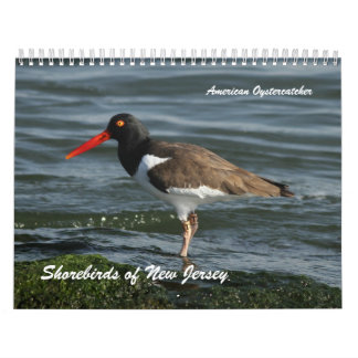 Shorebirds of New Jersey Calendar