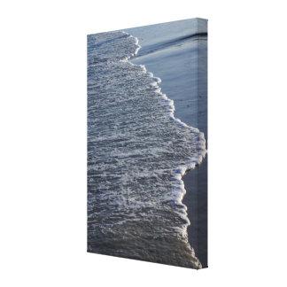 Shoreline Beauty Canvas Print
