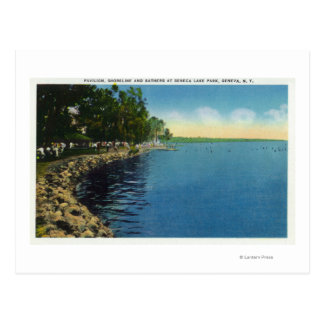 Shoreline, Pavilion, and Swimmers Postcard
