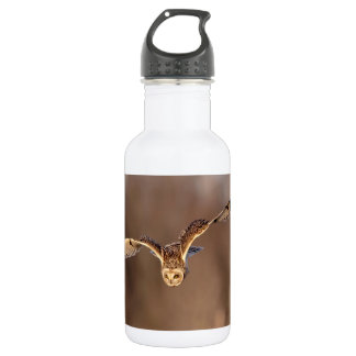 Short-eared owl diving towards the ground 532 ml water bottle