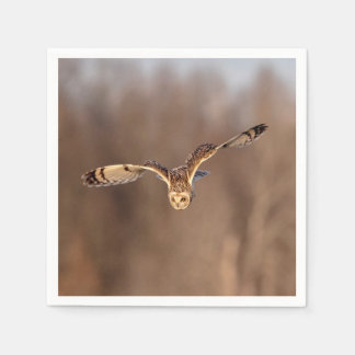 Short-eared owl diving towards the ground napkin