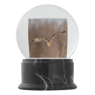 Short-eared owl diving towards the ground snow globe