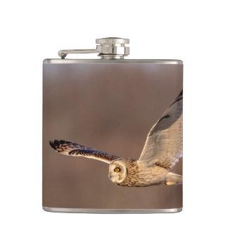 Short-eared owl in flight hip flask