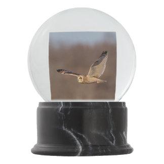 Short-eared owl in flight snow globe