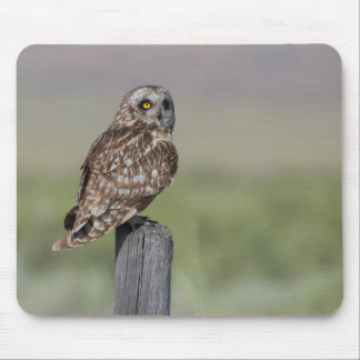 Short-eared Owl Mouse Pad