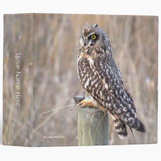 Short-Eared Owl with Vole Binder
