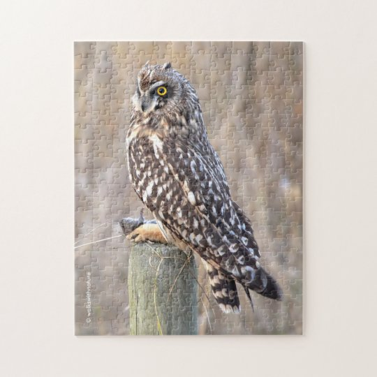 Short-Eared Owl with Vole Jigsaw Puzzle