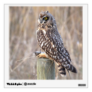Short-Eared Owl with Vole Wall Sticker