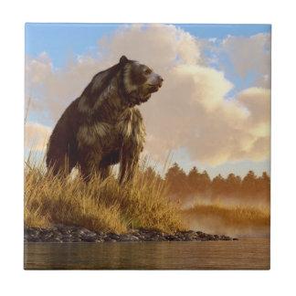 Short Faced Bear Tiles