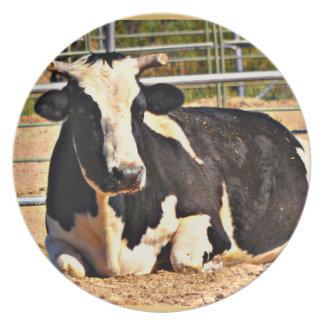 Short Horn Cow Melamine Plate